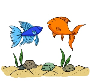 Keeping betta fish with other fish