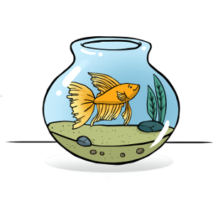 Can betta fish live in a bowl?