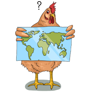 Where do chickens come from?